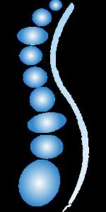spine-2129816_1280